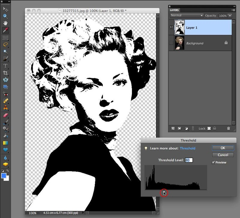 Warhol-Style Pop-Art Effect with Photoshop Elements - TipSquirrel