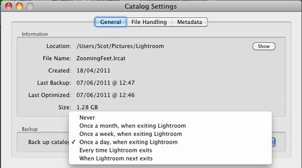Catalog dialog box