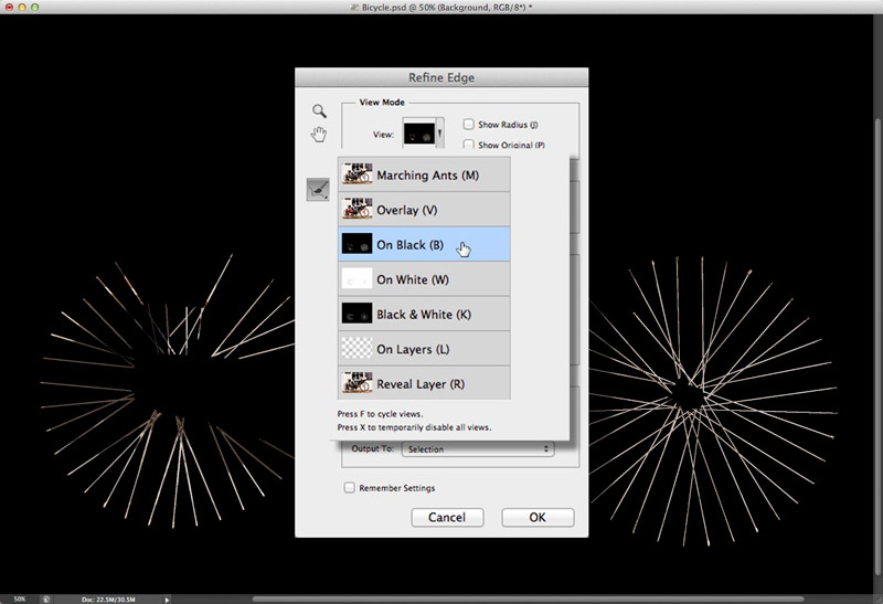Screen grab showing the selected areas viewed on black using the Refine Edge dialog