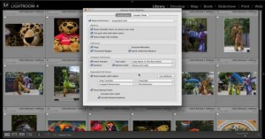 Heads Up! Getting Information in Lightroom