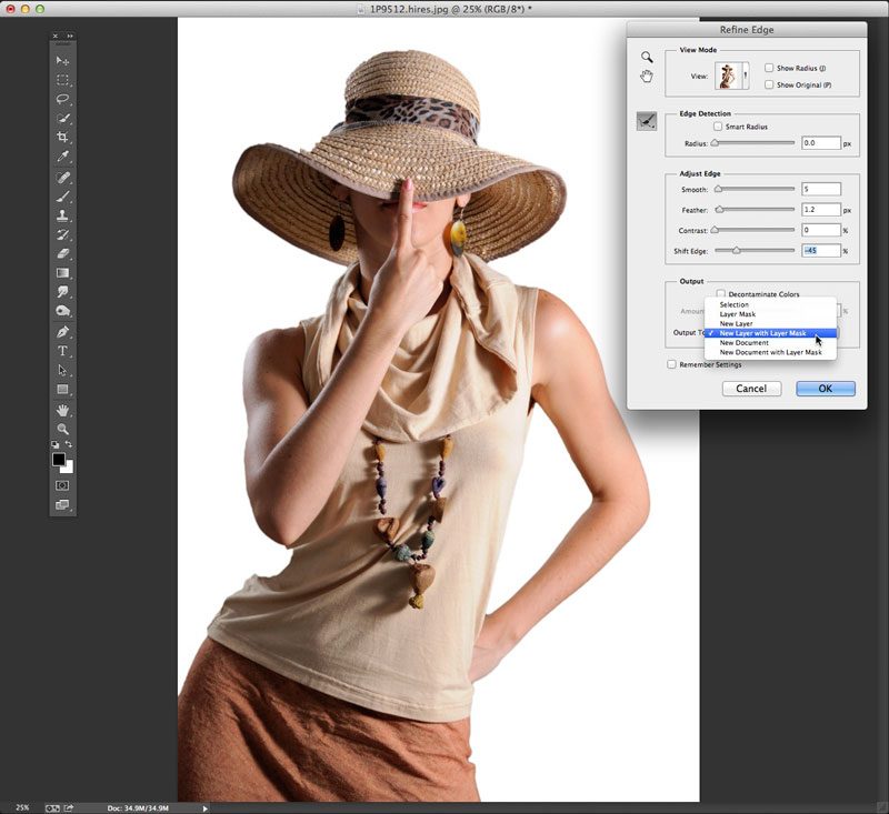 Using Photoshop's Refine Edge tool to adjust the selection