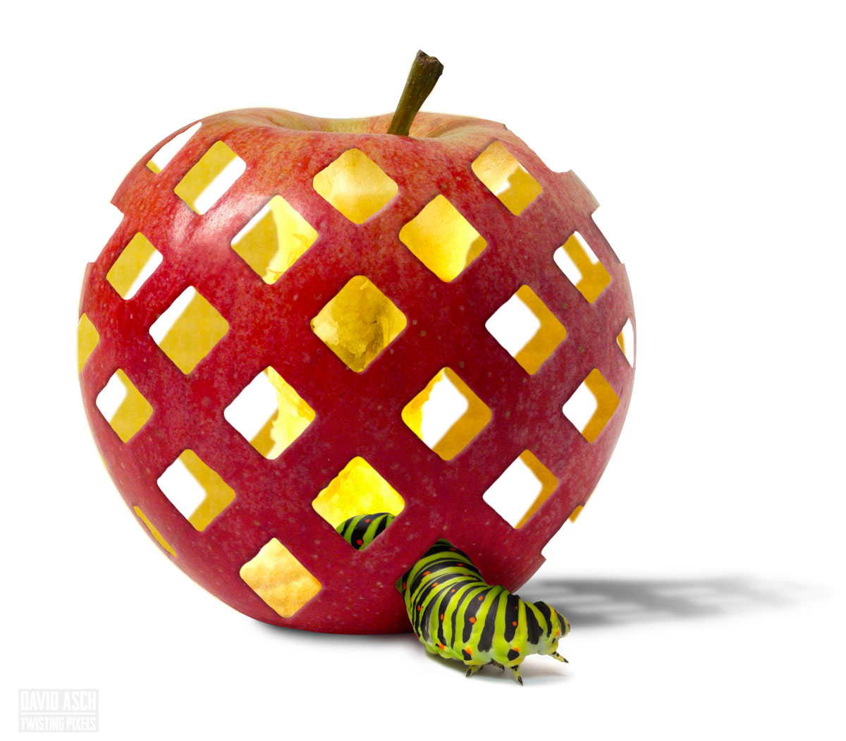 An image of a caterpillar emerging from an apple with a latticework skin. Created using a similar technique to this article.