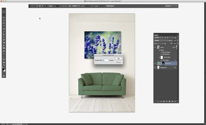 Image showing the Expand Selection dialog in Photoshop CC