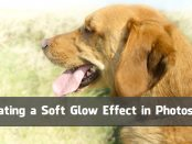Creating a Soft Glow Effect in Photoshop