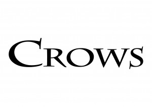 01_crows