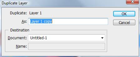 03 Duplicate layer dialogue
