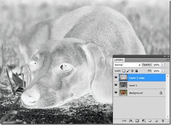 Sketchup-06