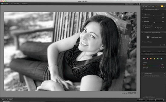 Silver Efex Pro image-1