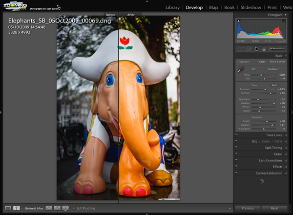 Before and After Lightroom Edit of DNG