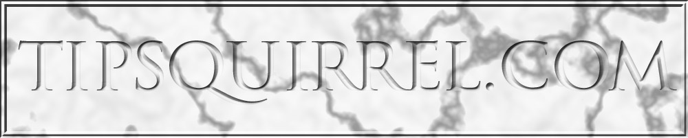 Header image with the TipSquirrel site name chiseled into a marble texture