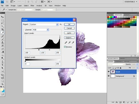 How to Make a Photoshop Brush | Simon Rudd for TipSquirrel.com