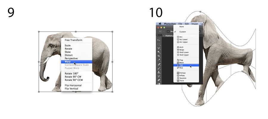 An image showing an elephant being image warped