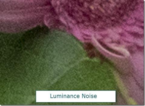 Noise-15