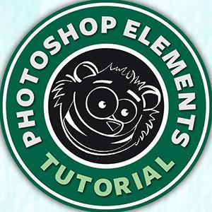 text-on-a-path-photoshop-elements