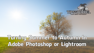 Change Summer to Autumn using Photoshop or Lightroom